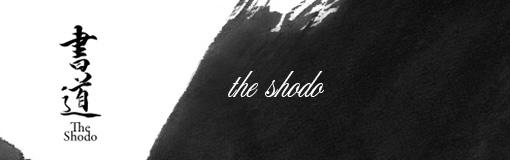 お正月だし「The Shodo」で書き初め体験してみました
