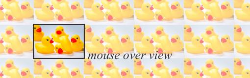 マウスオーバーした画像にレイアウトを崩さずにborderを表示するCSSの書き方