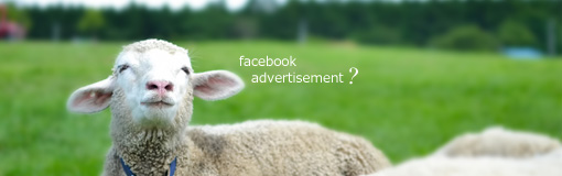 Facebook広告を出稿してみた〜驚くほど細かくできるターゲット設定とその結果〜